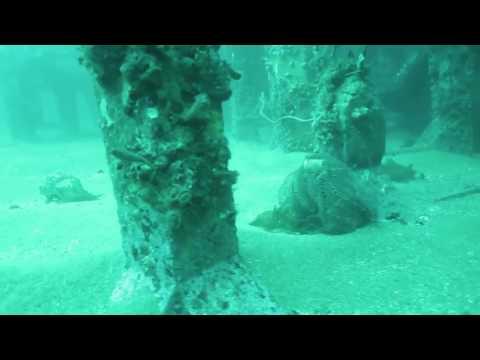 Plongé sous-marine dans les profondeurs de Shanghai