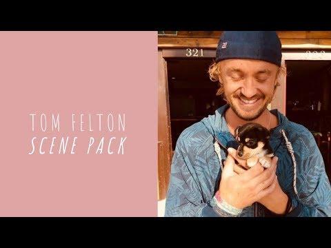 tom felton being an angel for 7 minutes straight | tom felton scene pack #1