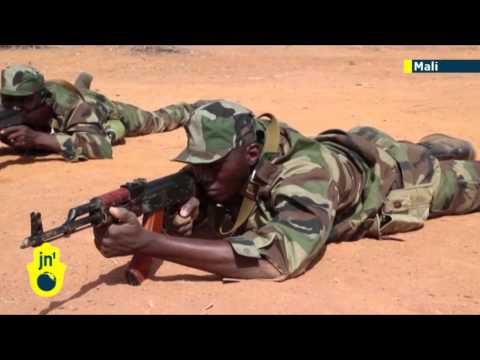 Hollande's Mali War: European Union training mission begins in West Africa