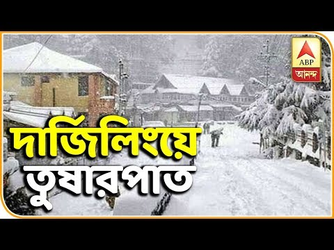 Tourists Share Their Experience of Snowfall in Darjeeling | Snowfall in Darjeeling | ABP Ananda