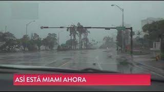 Los destrozos en Miami después del huracán Irma