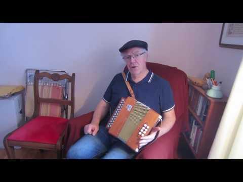 Irish button accordion - what instrument should a beginner choose?