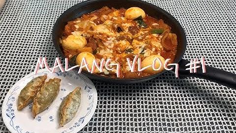 ENG) [Vlog] 요리하는게 취미인 취준생의 일상. 삼겹살 로제 파스타/ 떡없는 떡볶이/ 부추전/ 대파 수경재배