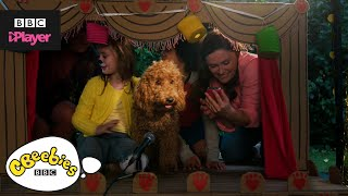 Waffle the Wonder Dog Top 5 | Family Moments | CBeebies