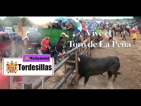 Especial del Toro de La Peña 2016 Antiguo Toro Vega (Tordesillas)