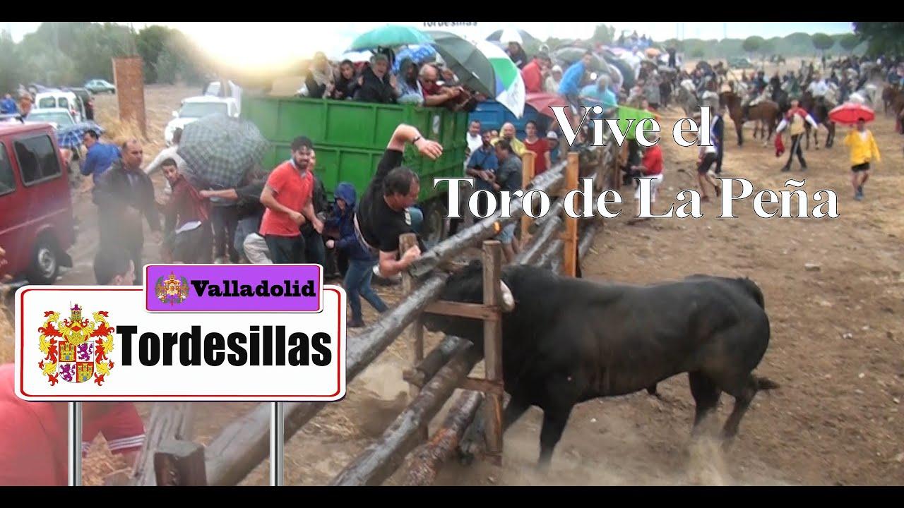 Especial Del Toro De La Peña 2016 Antiguo Toro Vega Tordesillas Youtube