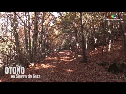 Otoño en Sierra de Gata