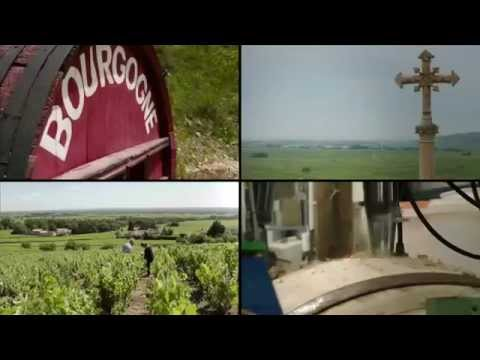 Burgundy Road Trip: First stop Chablis!