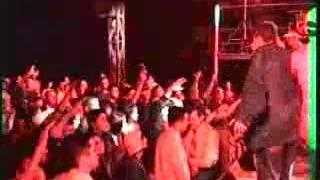 Выступление G-Style Mafia