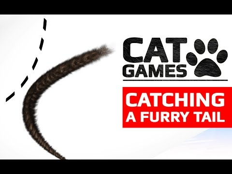 CAT GAMES  CATCHING A BLACK TAIL ENTERTAINMENT VIDEOS FOR CATS TO WATCH