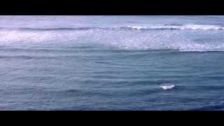 Japanese Wallpaper - Between Friends (Ft. Jesse Davidson) [Official Video]