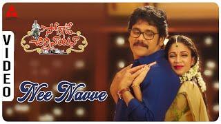 Nee Navve Video Song || Soggade Chinni Nayana Movie || Nagarjuna, Lavanya Tripathi || Annapurna