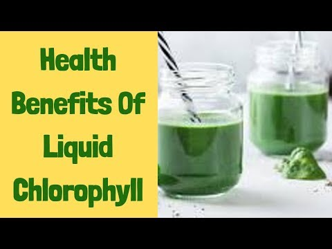 Top 9 Benefits Of Liquid Chlorophyll Chlorophyll Benefits