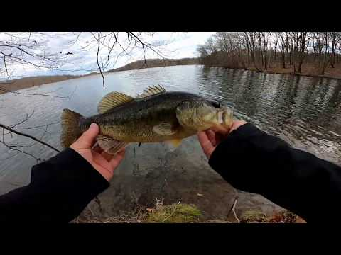 Bass Fishing With Jerk Baits . Piney Run Maryland