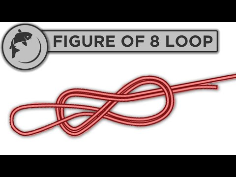 How To Tie A Figure Of Eight 8 Loop Knot