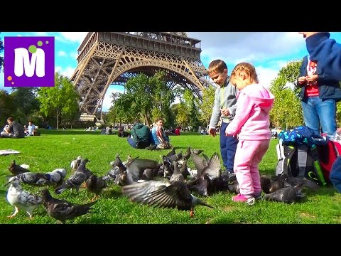 Париж День 7 экскурсия на автобусе к Эйфелевой Башне Big Bus Tour  in Paris