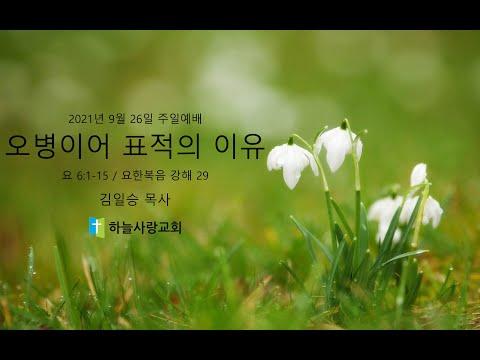 요한복음 강해 29 요 6.1-15 오병이어 표적의 이유