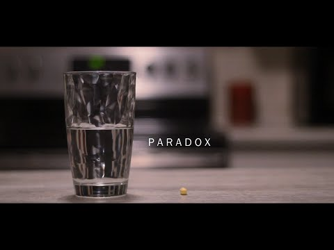 [ACCEPTED] Paradox - Ryerson University: Film Studies Portfolio 2015 (Perception)