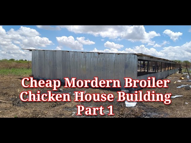 HOW TO BUILD CHEAP MORDERN BROILER CHICKEN  HOUSE PART 1