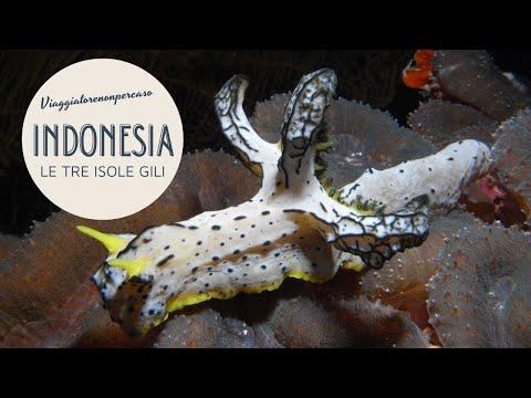 Indonesia. Le tre Isole Gili