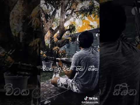 Download සුළඟ වගේ   Sulanga wage   Cover by Dimalka