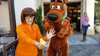 スクービー・ドゥーはユニバーサル・スタジオ・ハリウッドで私のチックで犬のうろつきを取得!null