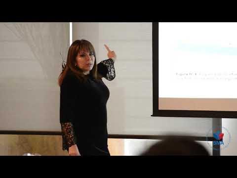 Día 3  Presentación OEFA Perú y ANLA Colombia