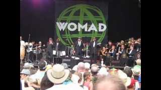 WOMAD NZ 2013 - Melbourne Ska Orchestra - A Message To You Rudy