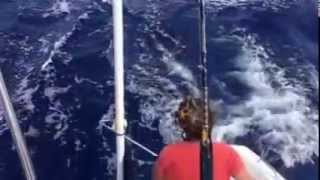 video transat 2013 Catamaran outremer 45