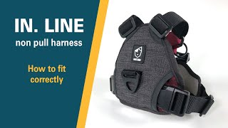 IN . LINE non pull harness | Fitting guide | Best Dog Products