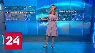 Акула против Фелпса: пострадавших нет