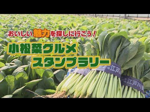 おいしい魅力を探しに行こう!小松菜グルメスタンプラリー