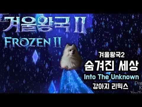 겨울왕국2 Into The Unknown ( 숨겨진 세상 ) 커버 강아지 리믹스 (Frozen 2 OST dog cover)