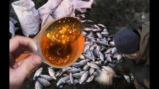 Рыба с ума сходит бросается клюёт смотрите быстрей как я сделал ликвид из прикормки для рыбалки