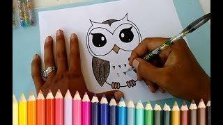 Cara Menggambar Burung Hantu Keren - Edukasi Anak Indonesia