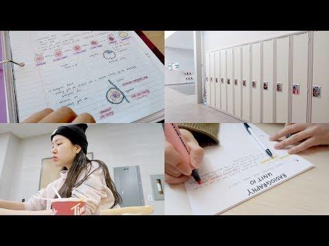 [Eng] Vlog #68 | Final Week Vlog