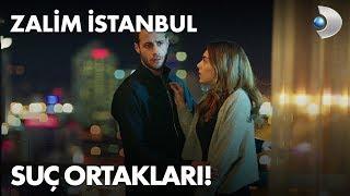 Suç ortakları! Zalim İstanbul 7. Bölüm
