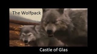 The Wolfpack - Castle of Glas