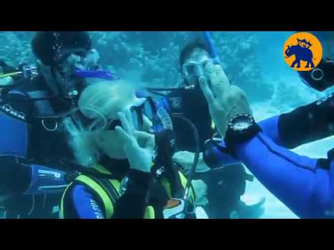 Scuba Diving – Beginner Course with Dive India