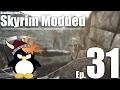 Inigo Gives Me an Evaluation - Skyrim Modded Ep 31