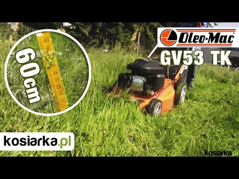 Oleo-Mac GV53 TK Allroad 4 kosi wysoką trawę 60 cm !!!
