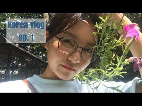 Korea Vlog ep. 1 : A Week in My Life in Seoul