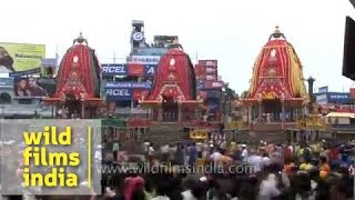 Puri celebrates the Jagannath Rath Yatra
