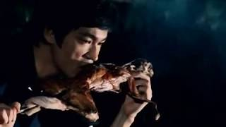 Bruce Lee Is Eating a Rabbit (Not a Cat)