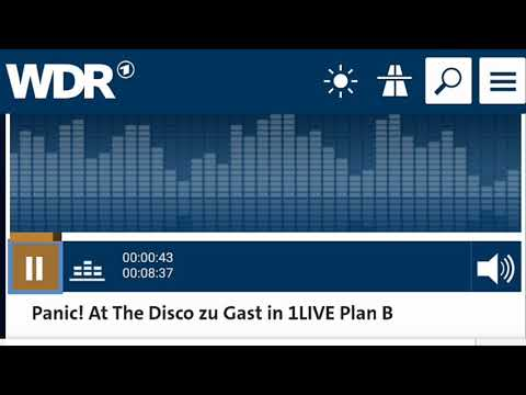 Panic! At The Disco Interview 1LIVE Plan B