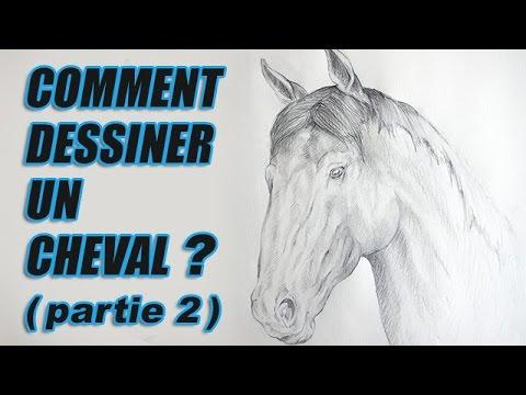 Dessiner un cheval portraits d 39 animaux youtube - Dessiner cheval ...