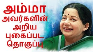 jayalalitha amma rare and unseen photo history   admk   mgr   about family