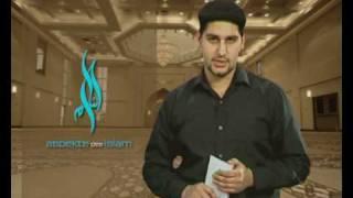 Intro Aspekte des Islam - Die Vorurteile ggü. dem Islam