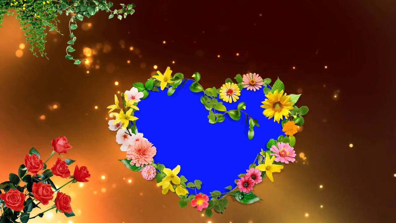 Love Symbol Beautiful Blue Mat Background Animated Video Youtube