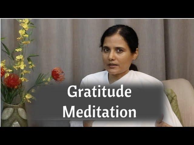 Gratitude Meditation - Soul Fitness Episode 50